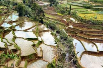 De Indonesische Eilanden