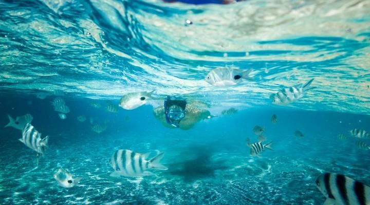 Snorkelen op de Malediven