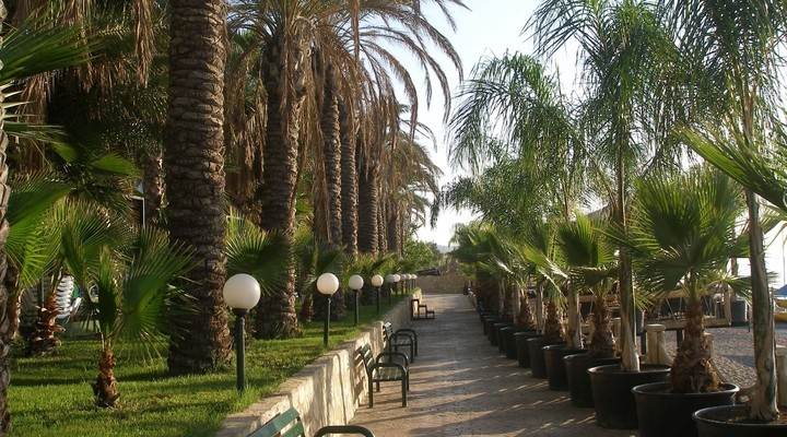Palmenboulevard in Kemer