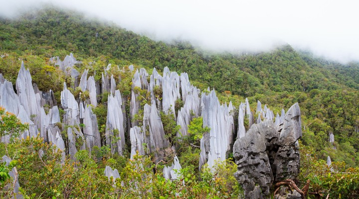 Gunung Mulu Nationaal Park