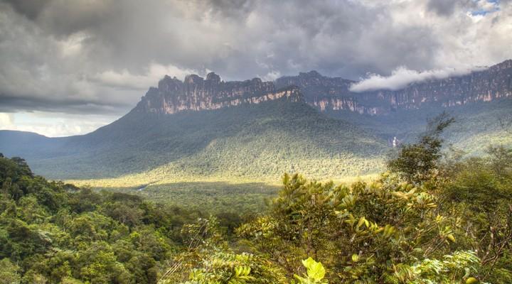 Veel natuurgebieden in Venezuela worden beschermd