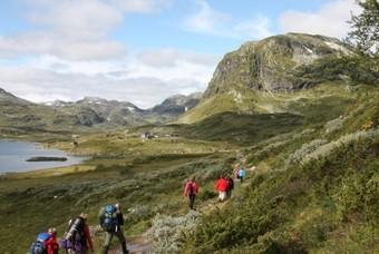Landschap Noorwegen met bergen en water