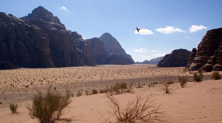 Woestijnlandschap van Jordanie, Wadi Rum