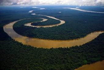 Het Amazone gebied