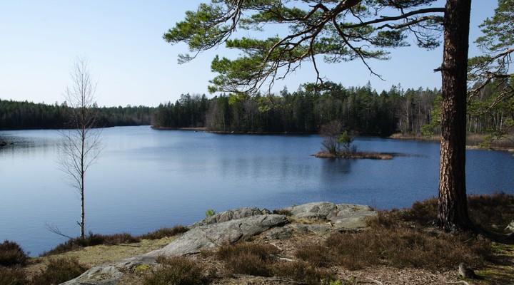 Landschap Zweedse provincie Småland