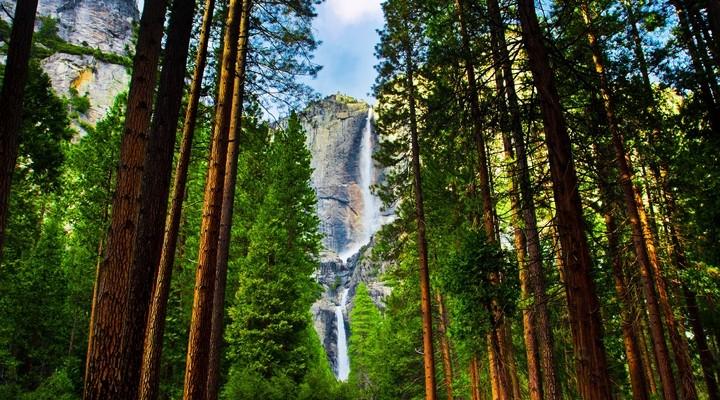 De Yosemite Falls in het Yosemite National Park