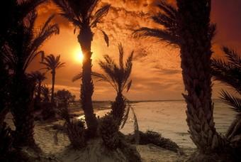 Ondergaande zon op het strand van Tunesië