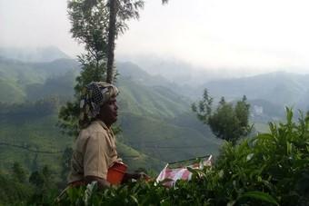 Reis door Zuid-India