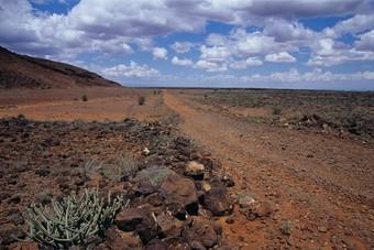 Nieuwe rondreis in Kenia en Tanzania bij 333travel