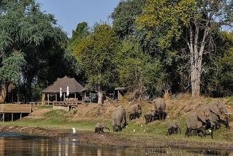 Ruckomechi Camp Zimbabwe