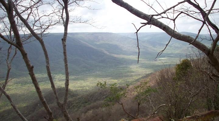Oerwoud, uitzicht vanaf berg