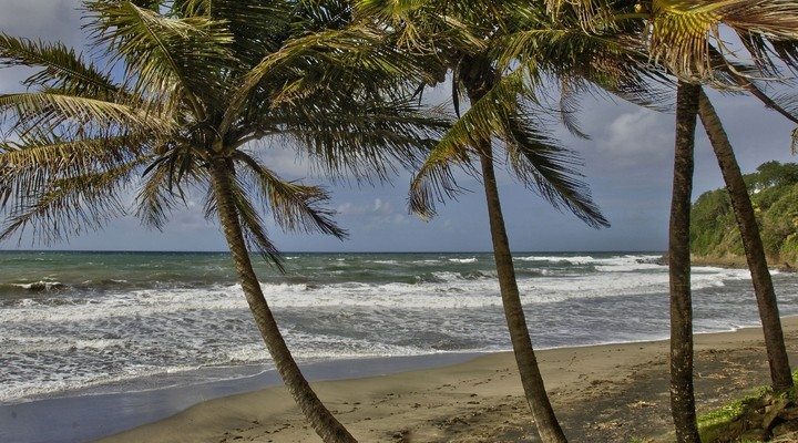 Strand Sainte-Marie, Martinique