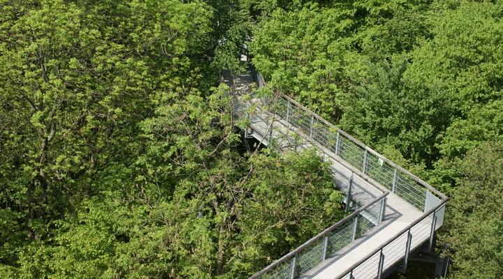 Nationaal Park Hainich