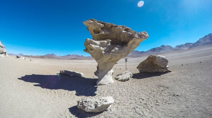 La piedra del árbol