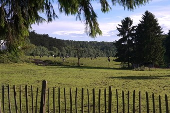 Een weekend in de Belgische Ardennen