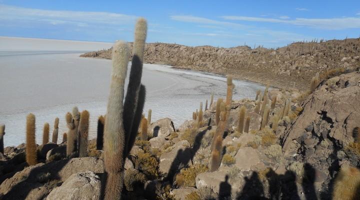 Isla del Incahuasi