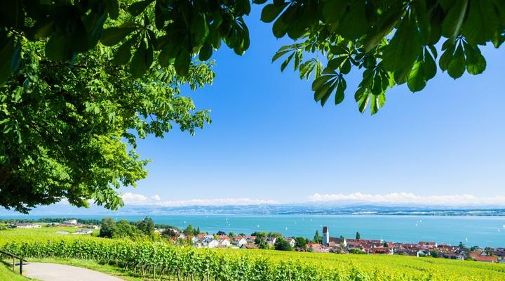 Bodensee met uitzicht op de Alpen