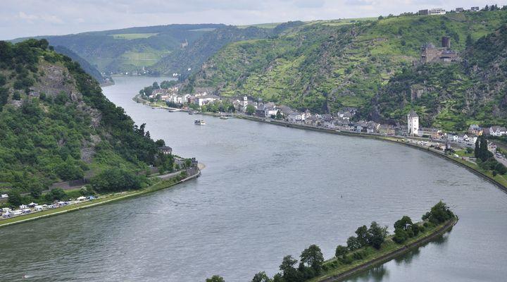 De Rijn