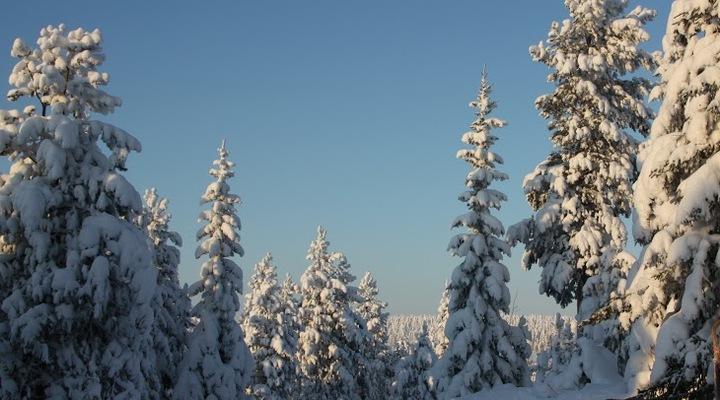 Winterwonderland in Finland