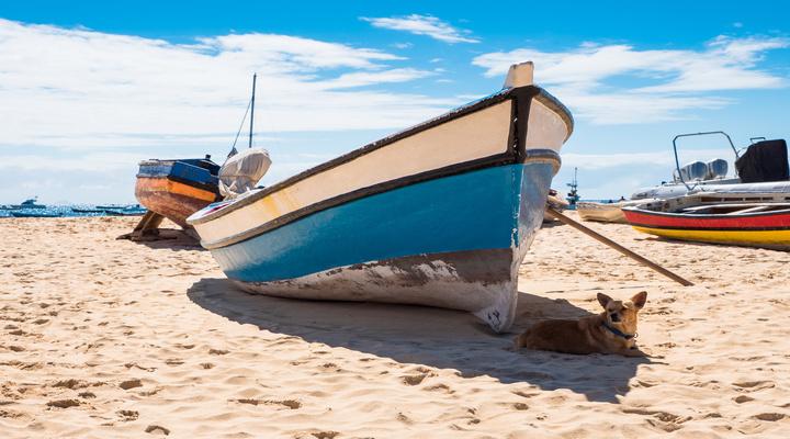 Strand van Santa Maria op Sal