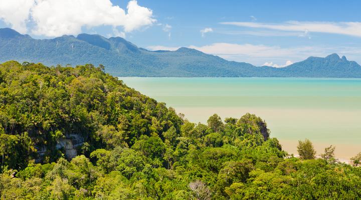 Het landschap van Maleisisch Borneo
