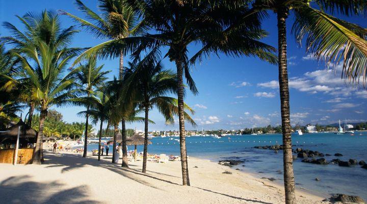 Zomer op Mauritius