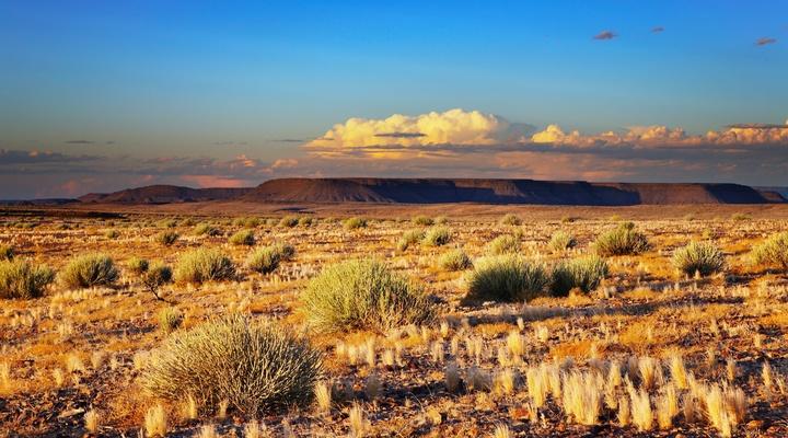Kalahari-woestijn