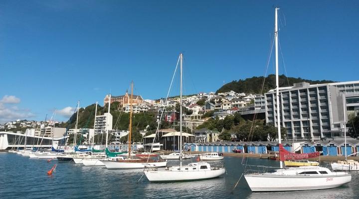 Kade met vele boten in Wellington
