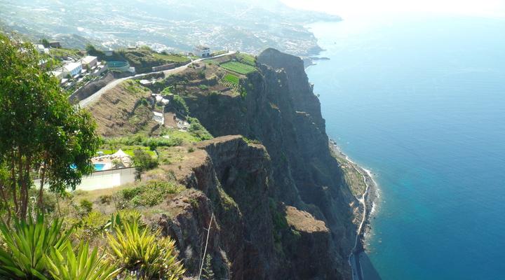 Flora en Fauna Madeira