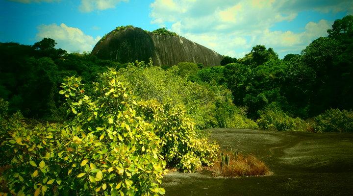 Suriname is o.a. geliefd om de prachtige natuur