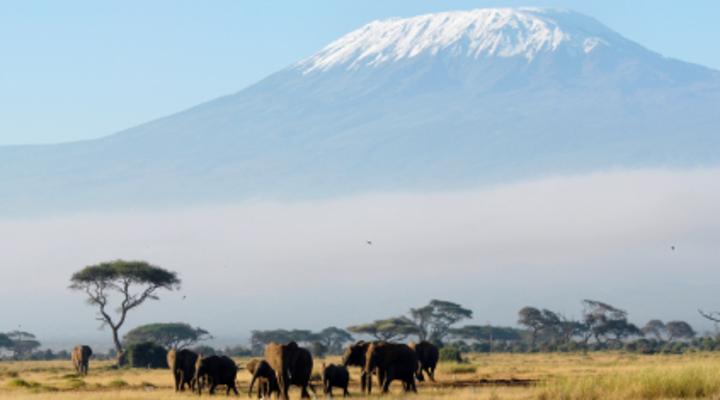 De kilimanjaro Tanzania