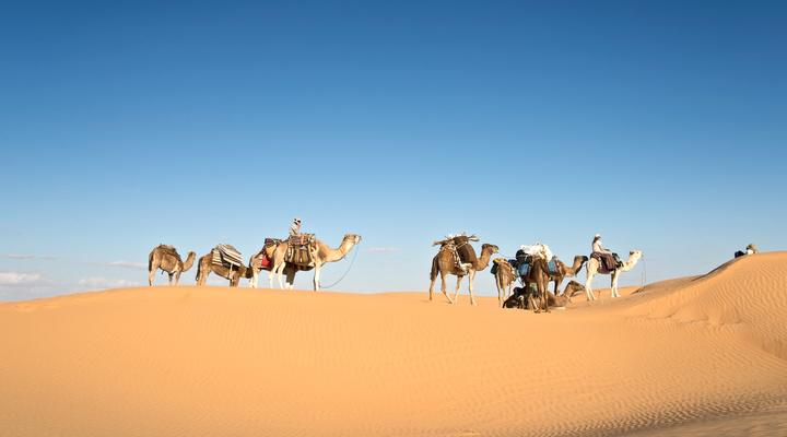 Woestijn Tunesië