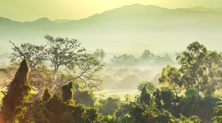 Vietnam is een van de bestemmingen