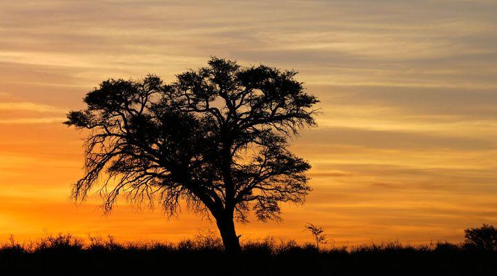 Schemering in Zuid-Afrika