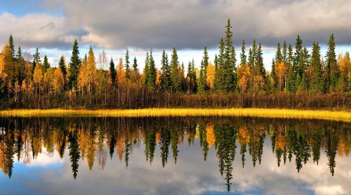 Herfstlandschap in het noorden van Zweden