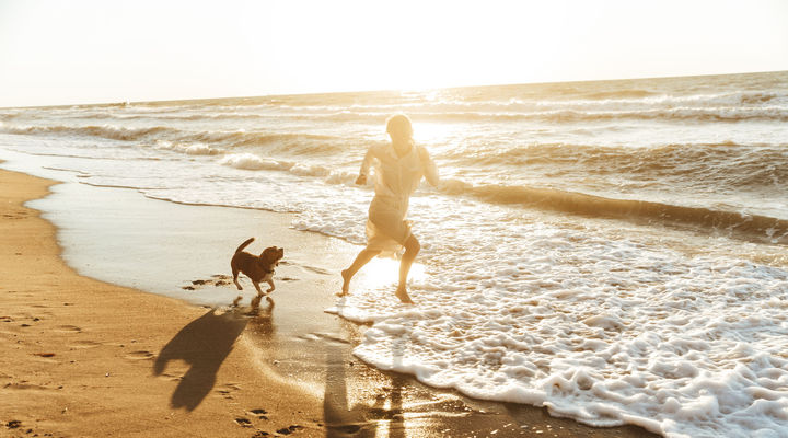 Op vakantie met huisdieren
