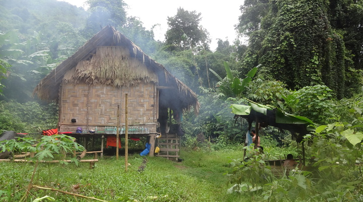 Ecohut in de jungle