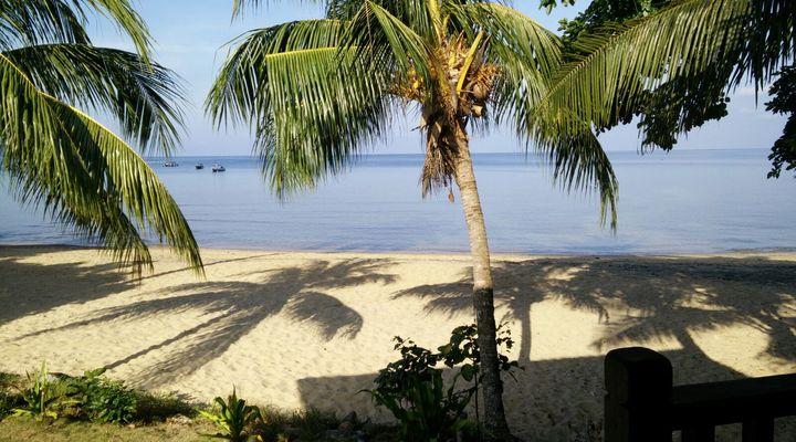 Uitzicht vanuit de beachhut