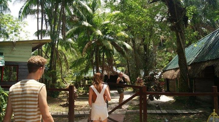 Het groene Suriname
